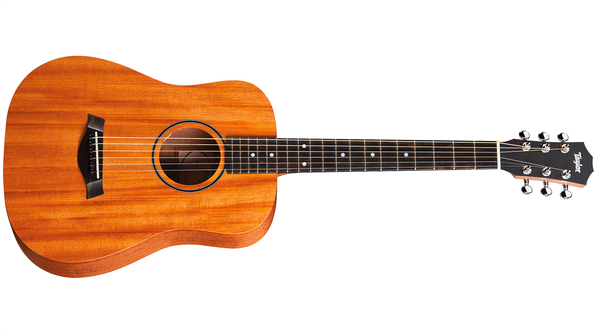 Taylor-BT2-front-2015_0