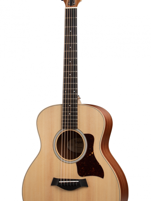 Taylor GS Front